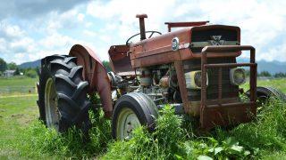 ブログは農業のようだ。